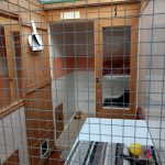 cattery pen, sleeping and run area